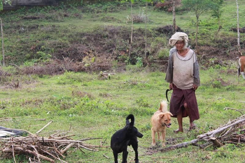 家の近所のおばあちゃん。犬を連れて牛の餌探し。