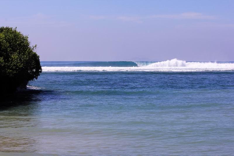 レギュラーの早いブレイク、ダンパーの波も多く、良い波を掴むとバックリチューブに入れます。