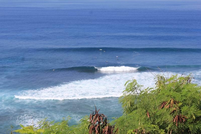 丘の上からはサーファーは豆粒程度にしか見えませんが波もサーファーも徐々に見えてきます。