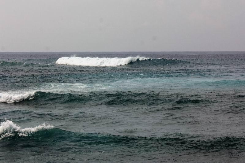 カレントを挟んでレギュラー波の逆方向に割れるグーフィーポイント、こちらもロータイドに良い波が立ちます。