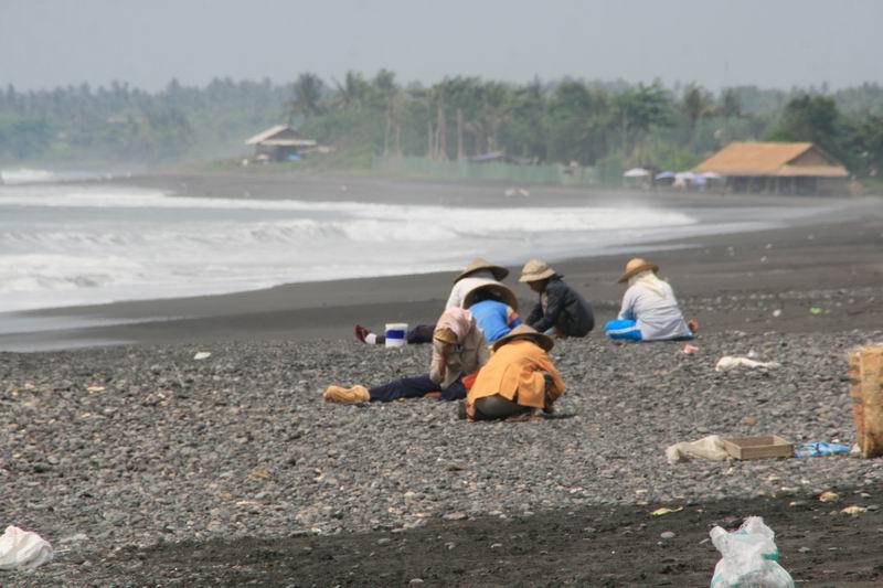 海岸で石を集めているおばちゃんたちをよく見かけます。